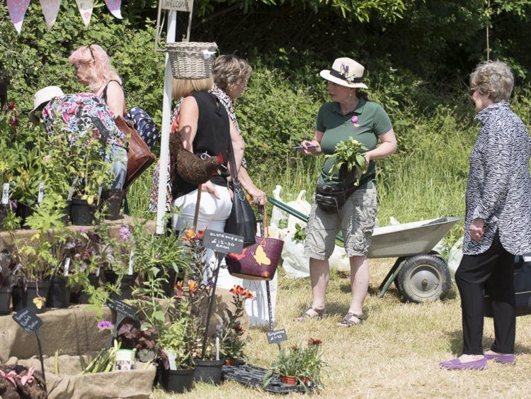 Hole Park | Rolvenden | Midsummer Fair | Exhibitor at Wealden Times Fair.