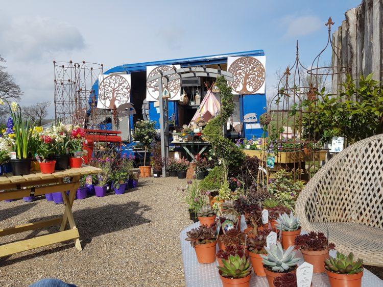 Around the Garden Table | Midsummer & Midwinter Fair | Exhibitor at Wealden Times Fair.