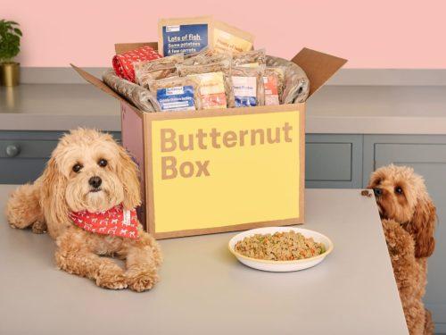 Butternut Box | Midsummer & Midwinter Fair | Exhibitor at Wealden Times Fair.