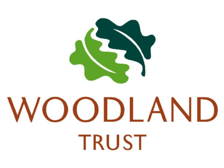 The Woodland Trust | Midsummer & Midwinter Fair | Exhibitor at Wealden Times Fair.